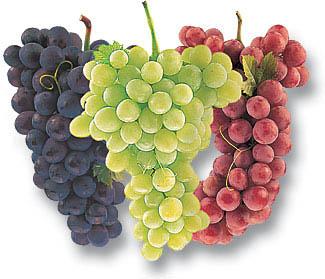 grape mixed